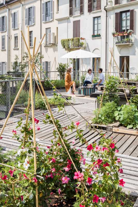 Architecture firm Piuarch's vegetable patch