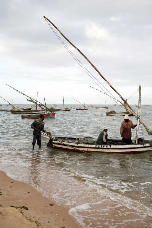 Fishermen bringing in their catch