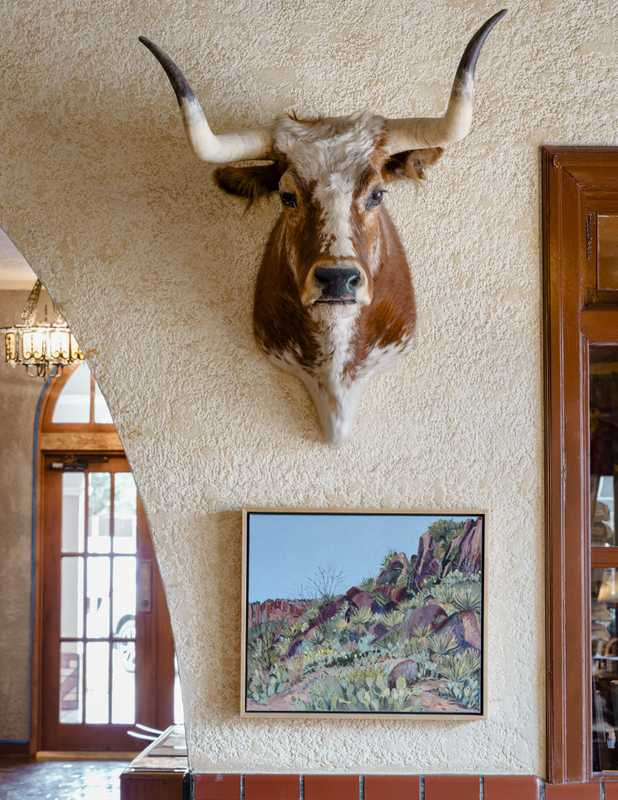 A longhorn, stuffed yet nonchalant, at the Hotel Paisano