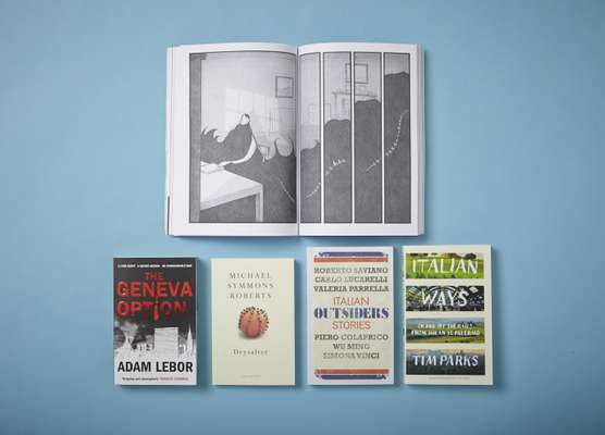 Books: The Gigantic Beard, The Geneva Option, Drysalter, Outsiders - Italian Stories, Italian Ways