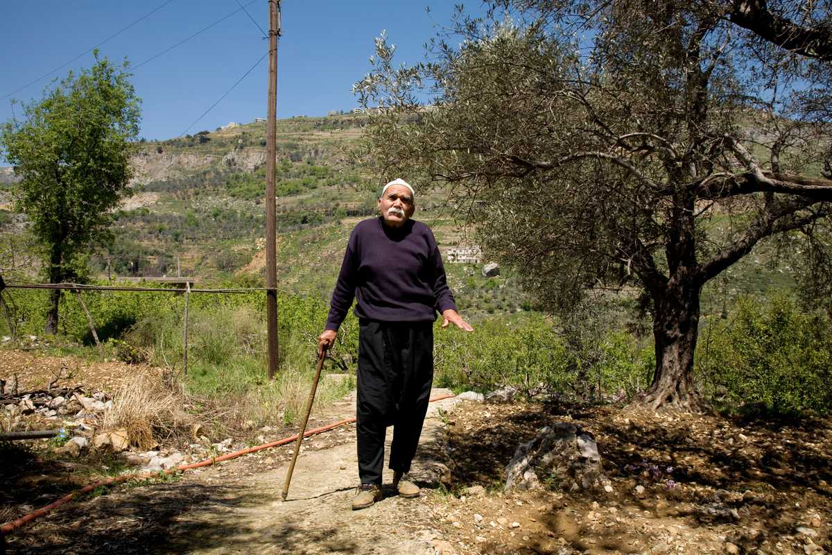 Druze farmer Badih Chaaban in the middle of an orchard in Rmeileh, Mount Lebanon