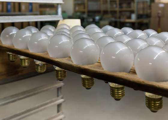 Finished bulbs ready for inspection