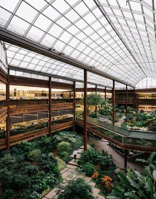 Atrium full of plants and natural light
