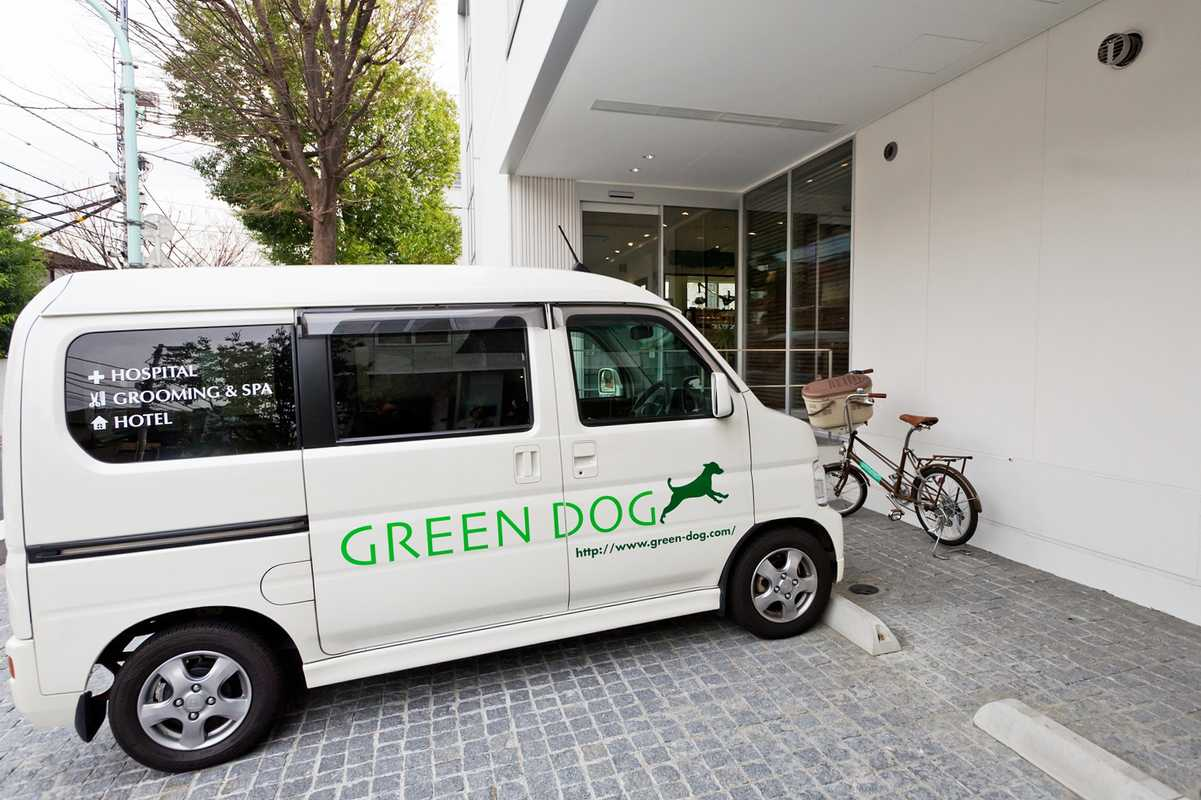 Green Dog salon, hotel, shop and animal hospital