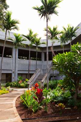 34. Honolulu Airport