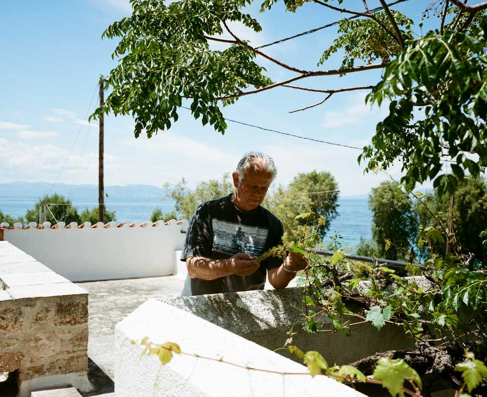 Agis Criticos at his terrace in Aegina