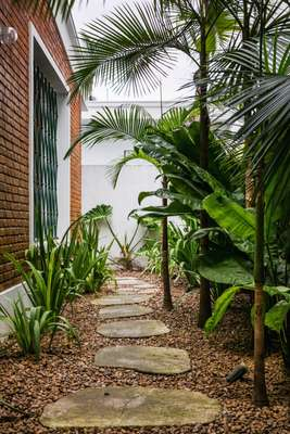 Stone path through garden