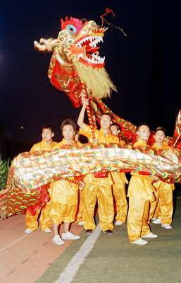 Dragon-dancing at the opening ceremony