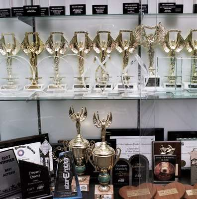 Awards, including one for 'Dream Quest', the best-selling adult video in 2000
