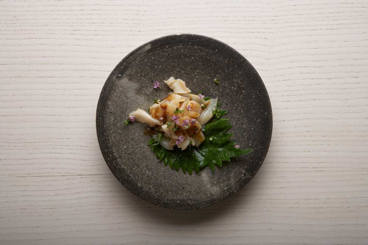 Seared razor clam with wasabi and soya dressing