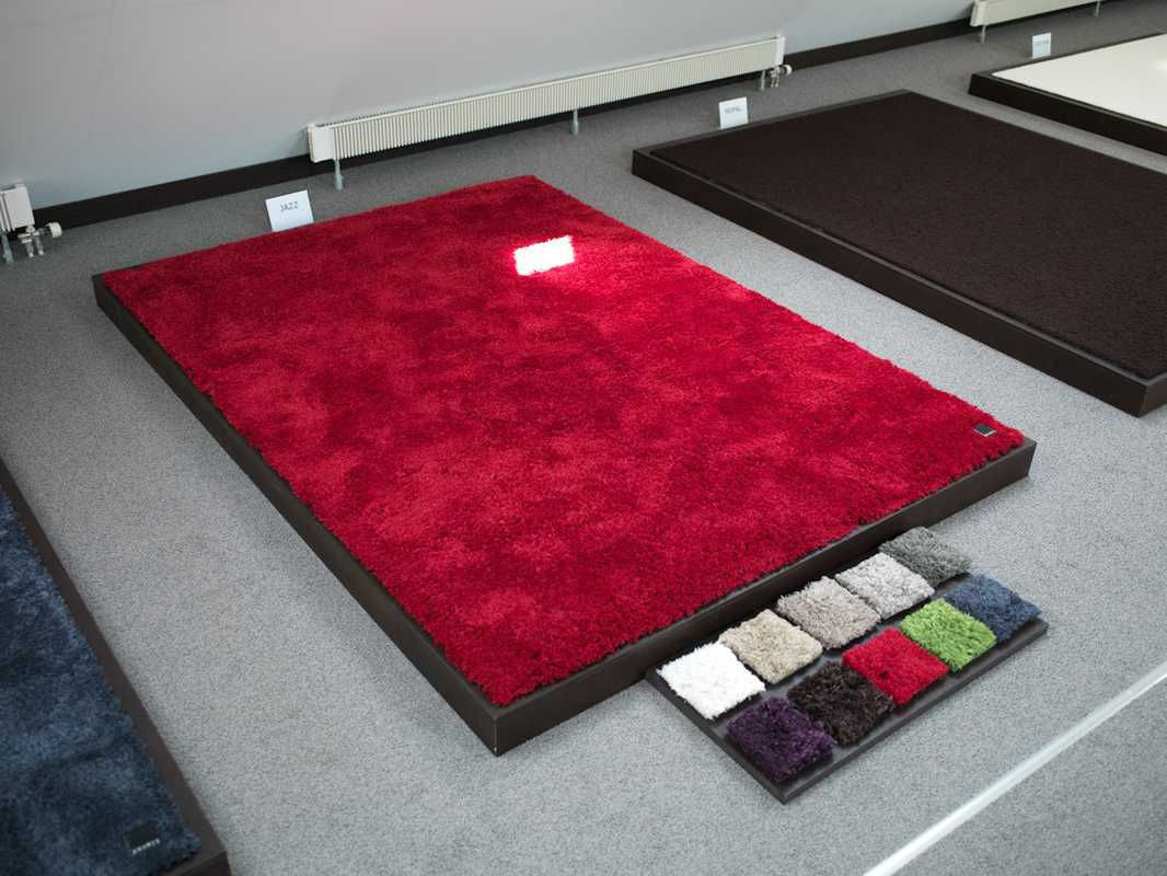 Carpet samples in the showroom