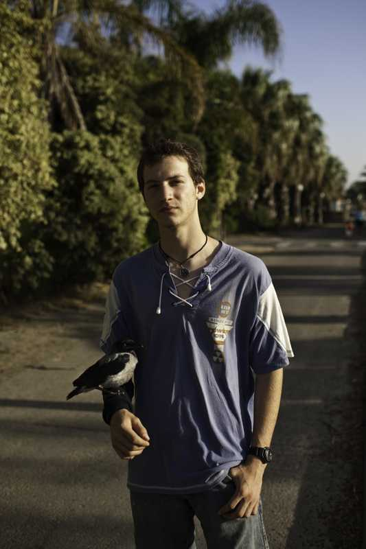Iftach Navot, an 18-year-old member of the Ma'agan Michael kibbutz, with an injured crow he'd rescued