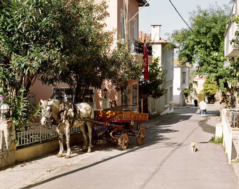 Horse and carriage is the only way to get around on the car-free islands