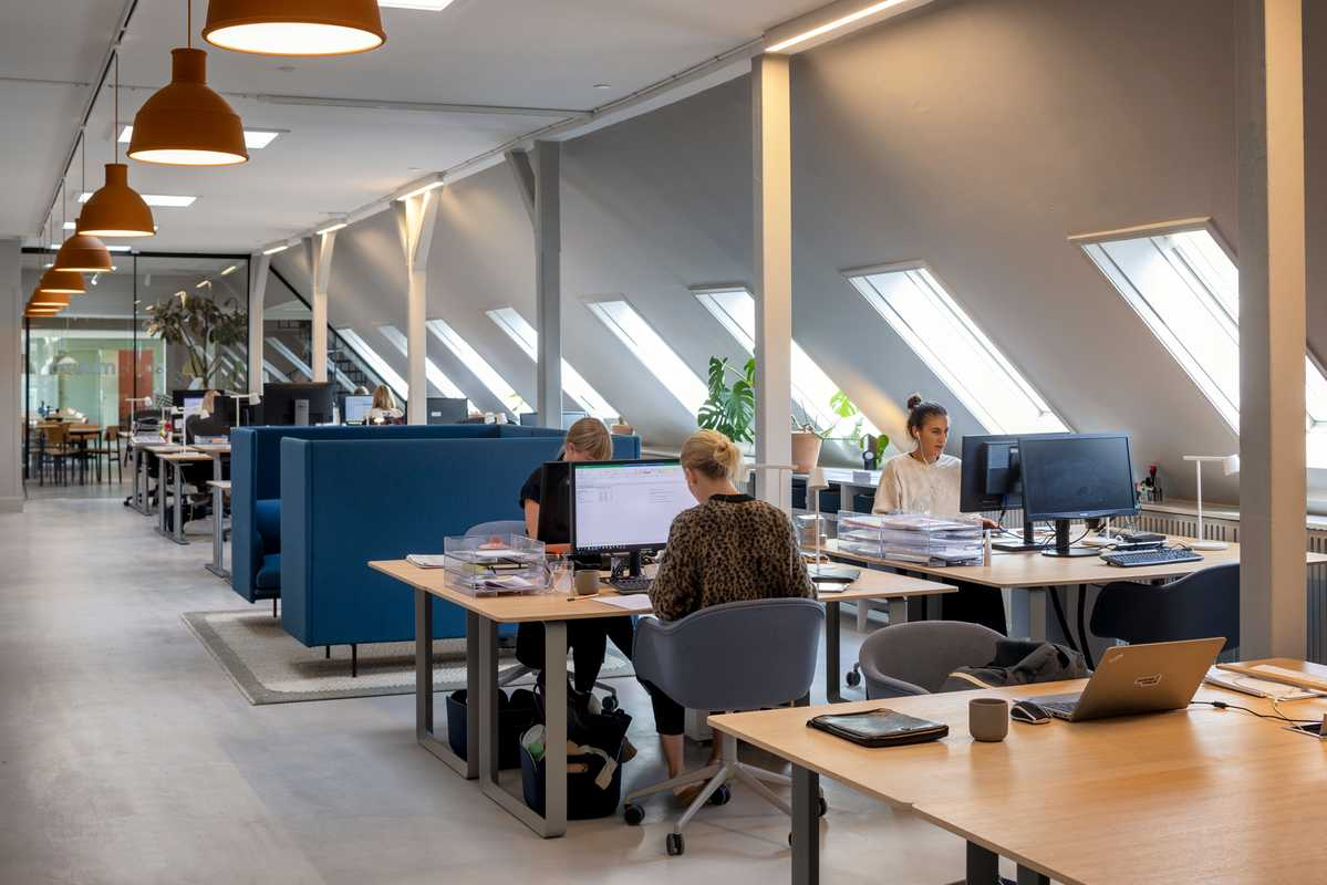 The office is bright thanks to skylights and Muuto lamps