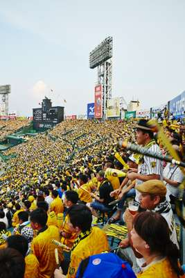 Match-day and a sell-out crowd baits arch-rivals, the Yomiyuri Giants of Tokyo