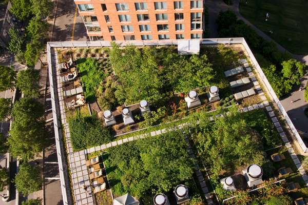 The tenants' garden on the roof of Solaire