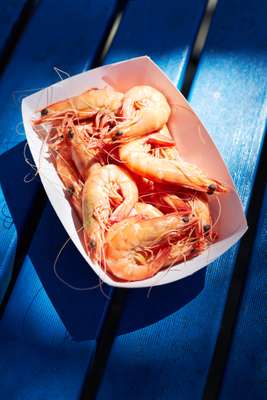 Fresh prawns courtesy of the Clarence River Fishermen's Co-operative