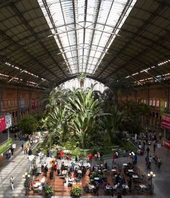 Atocha train station jungle