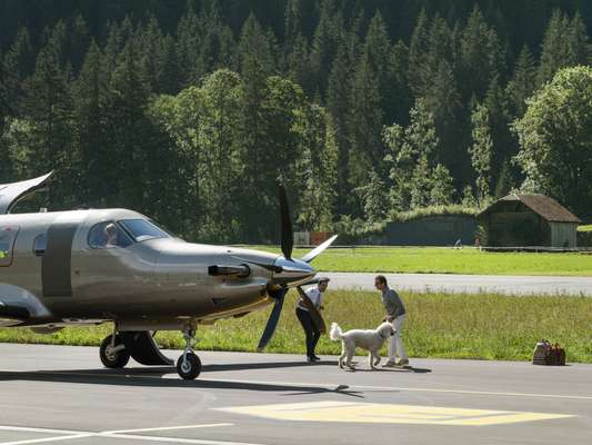 In the Alps, dogs are frequent flyers too