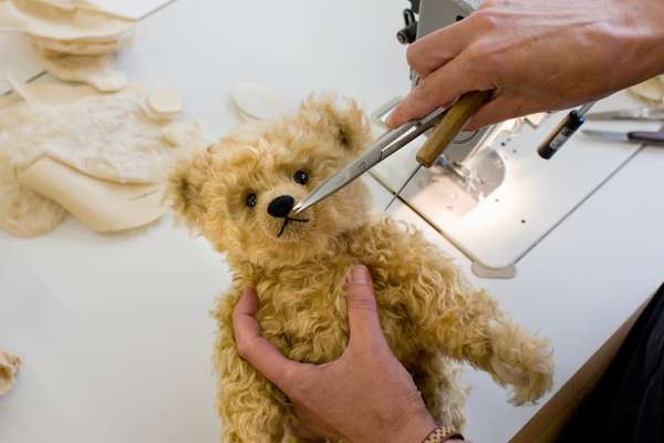 Delicate operation of stitching a bear's nose