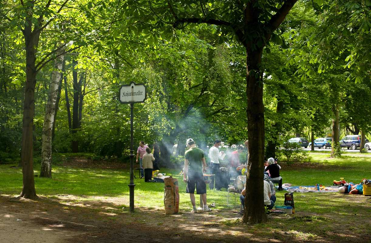 Barbecue in the Tiergarten