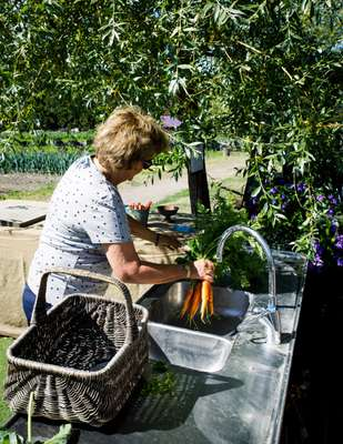 Carrot washing