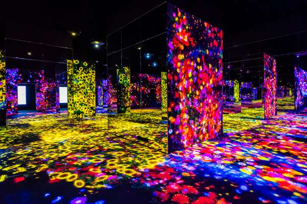 'Forest of Flower and People: Lost, Immersed and Reborn' at TeamLab Borderless