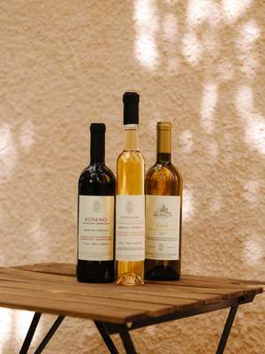 Wines from Petrakopoulos