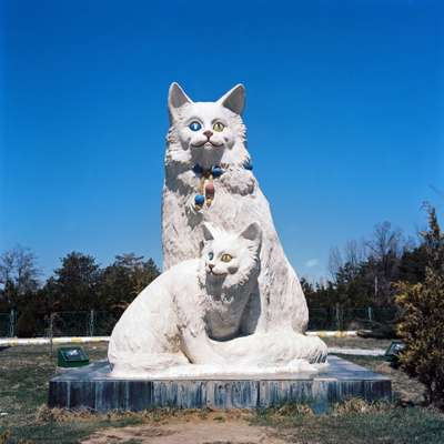 The Van cat in statue form