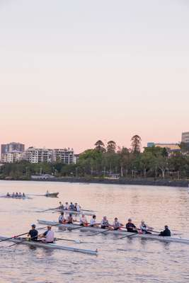 Rowers on the Brisbane River