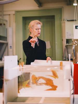 Contemporary-art conservation and  restoration professor Gerda Kaltenbruner
