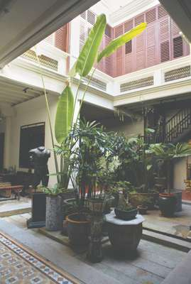 Leafy courtyard of a traditional house