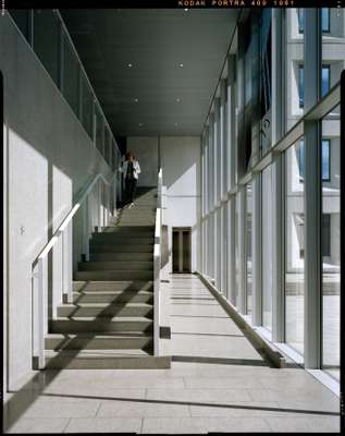 Stairway with light streaming in from the central courtyard