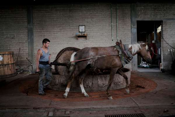 A worker uses a horse-pulled grinding stone