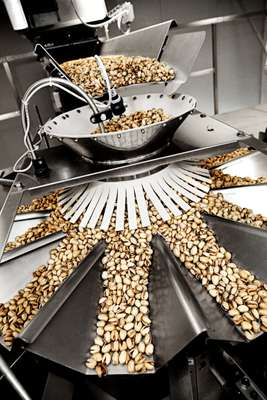Pistachio nuts are sorted and weighed before packaging