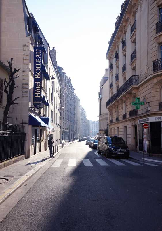 A well-groomed boulevard in the 16th arrondissement