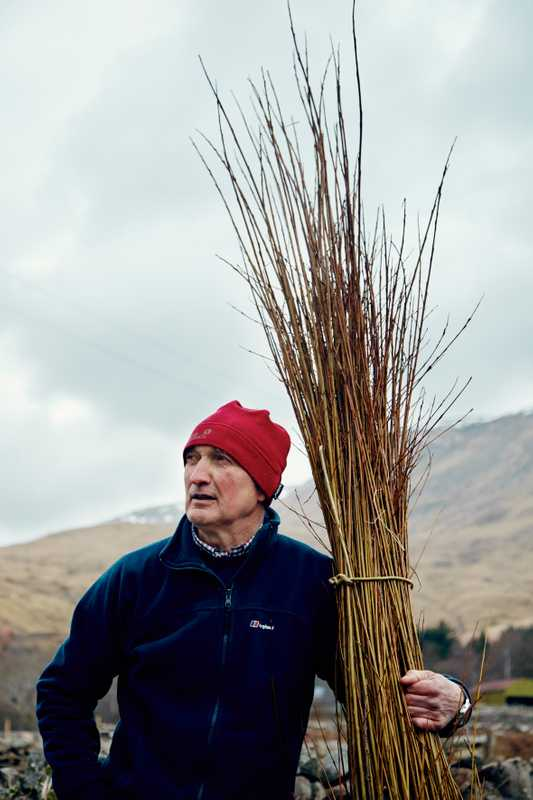 Joe Hogan with willow he's just harvested