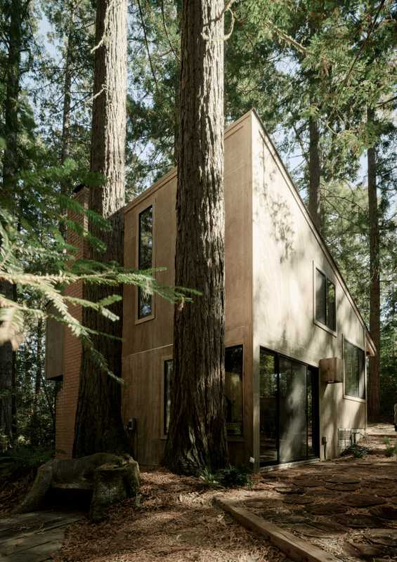 Chad DeWitt's woodland home