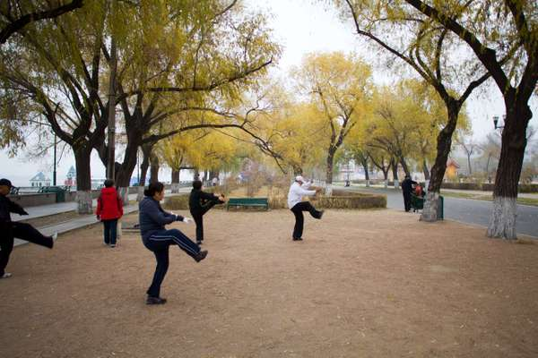 Morning tai chi in Stalin Park