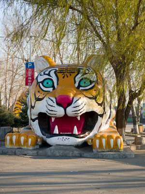 Sculpture outside the Northeast Siberian Tiger Sanctuary