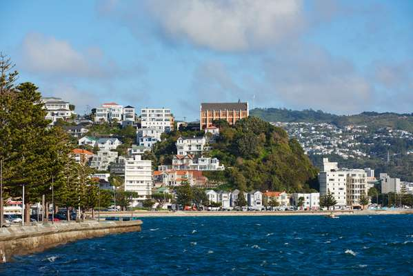 Oriental Bay and Wellington's erratic topography