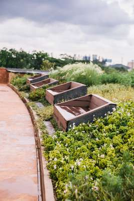 Rooftop garden and viewing park