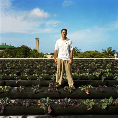 Hawaii farming