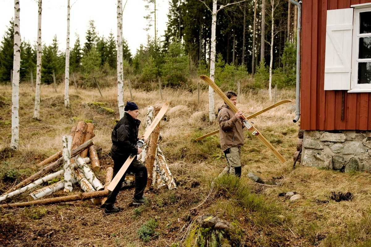 Wood used in a Rønning ski comes directly from the local forests