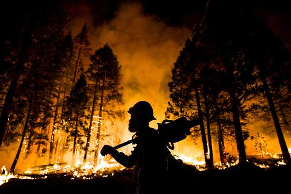 August 2015: firefighter watching a controlled burn in Sequoia National Forest