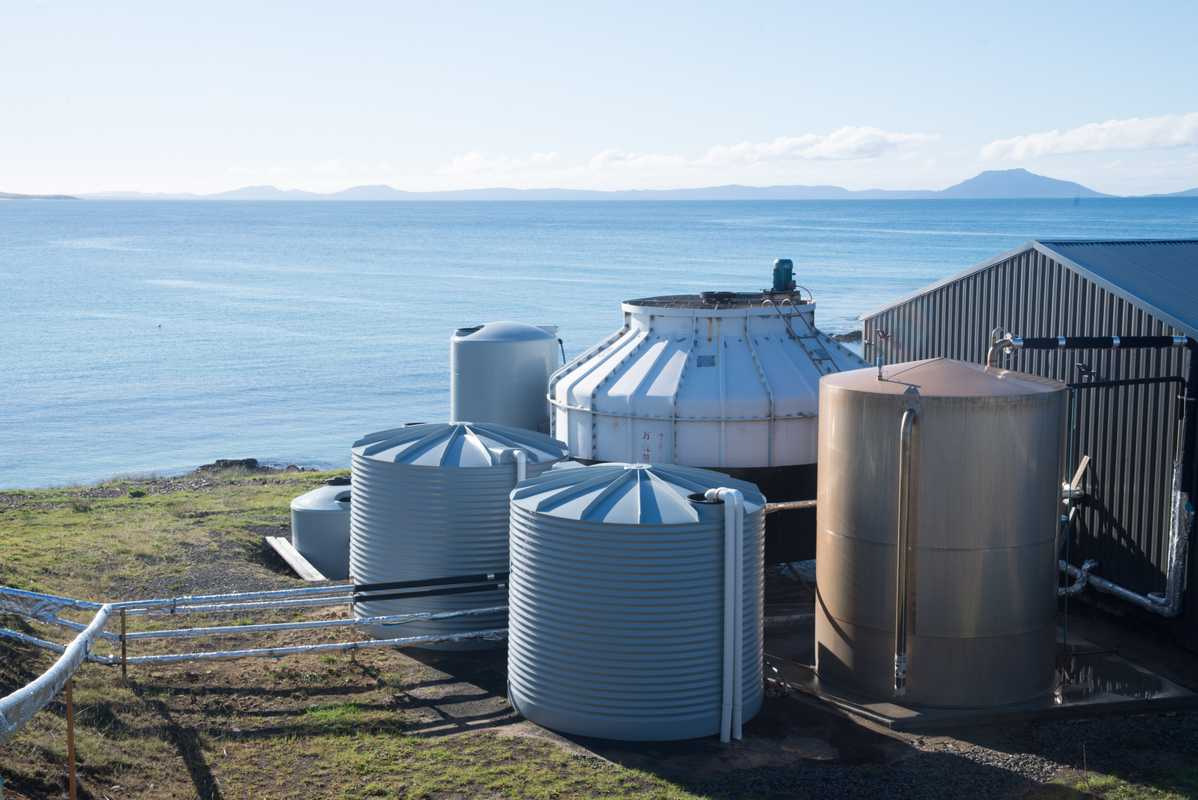 Tasman Sea Salt's evaporator tanks
