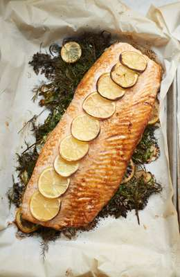 Salmon to be served with soured cream
