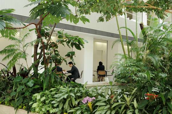 Kajima staff hold meetings in the atrium