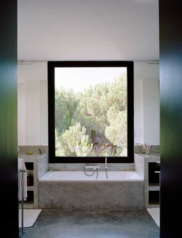 Pinto's bathroom with a view over the pines