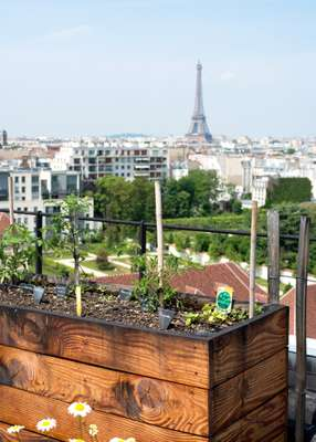 The rooftop garden of the Le Bon Marché Rive Gauche above La Grande Épicerie is reserved for staff